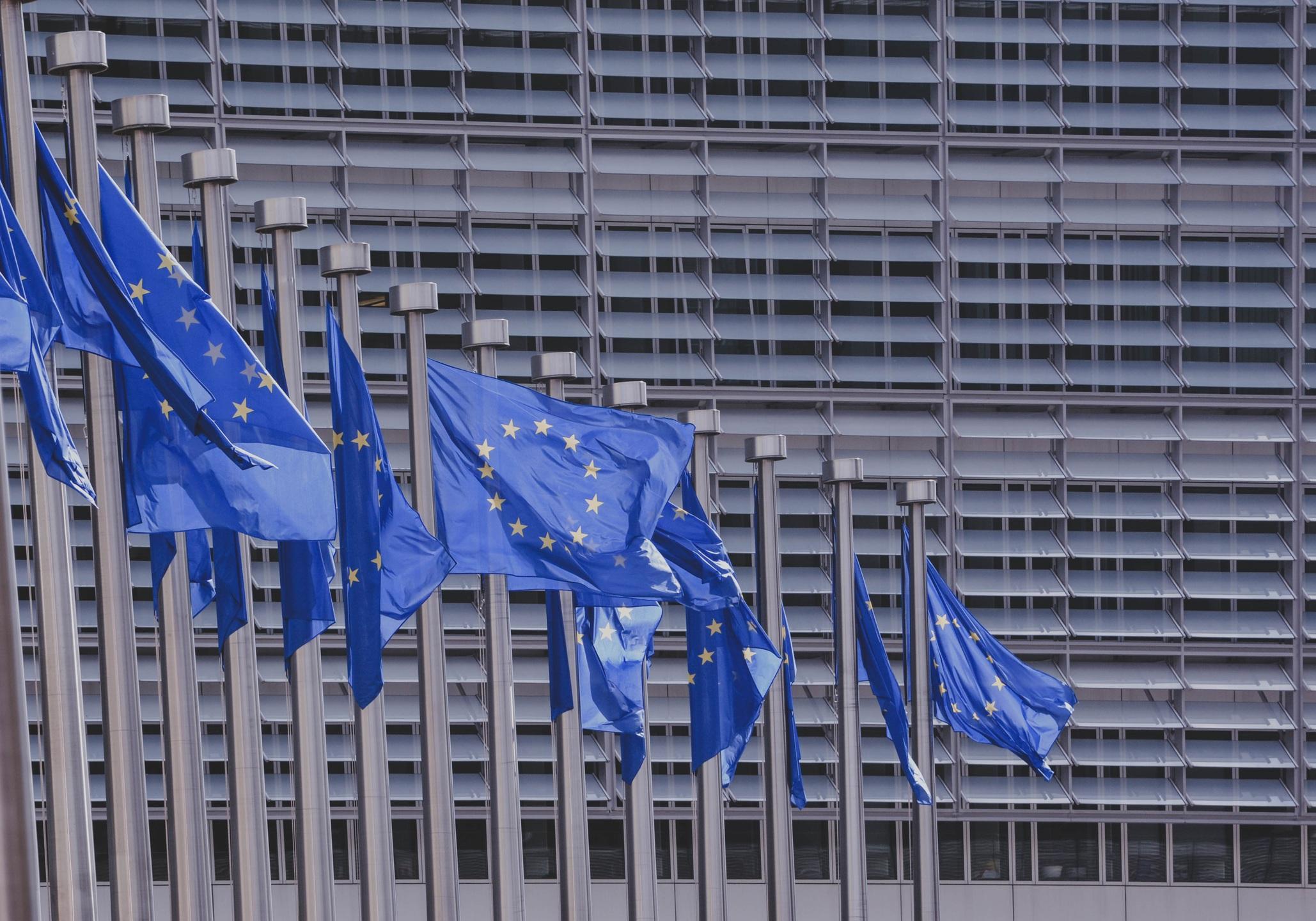 Wahlteilnahme der Partei der Vernunft für die Europawahl 2019 bestätigt!